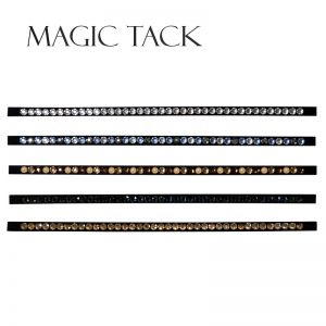 Inlay 2010 Magic Tack lang gerade